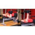 Hướng dẫn tập Ngực: Nằm trên ghế phẳng một tay nhấc tạ đôi - One Arm Dumbbell Bench Press